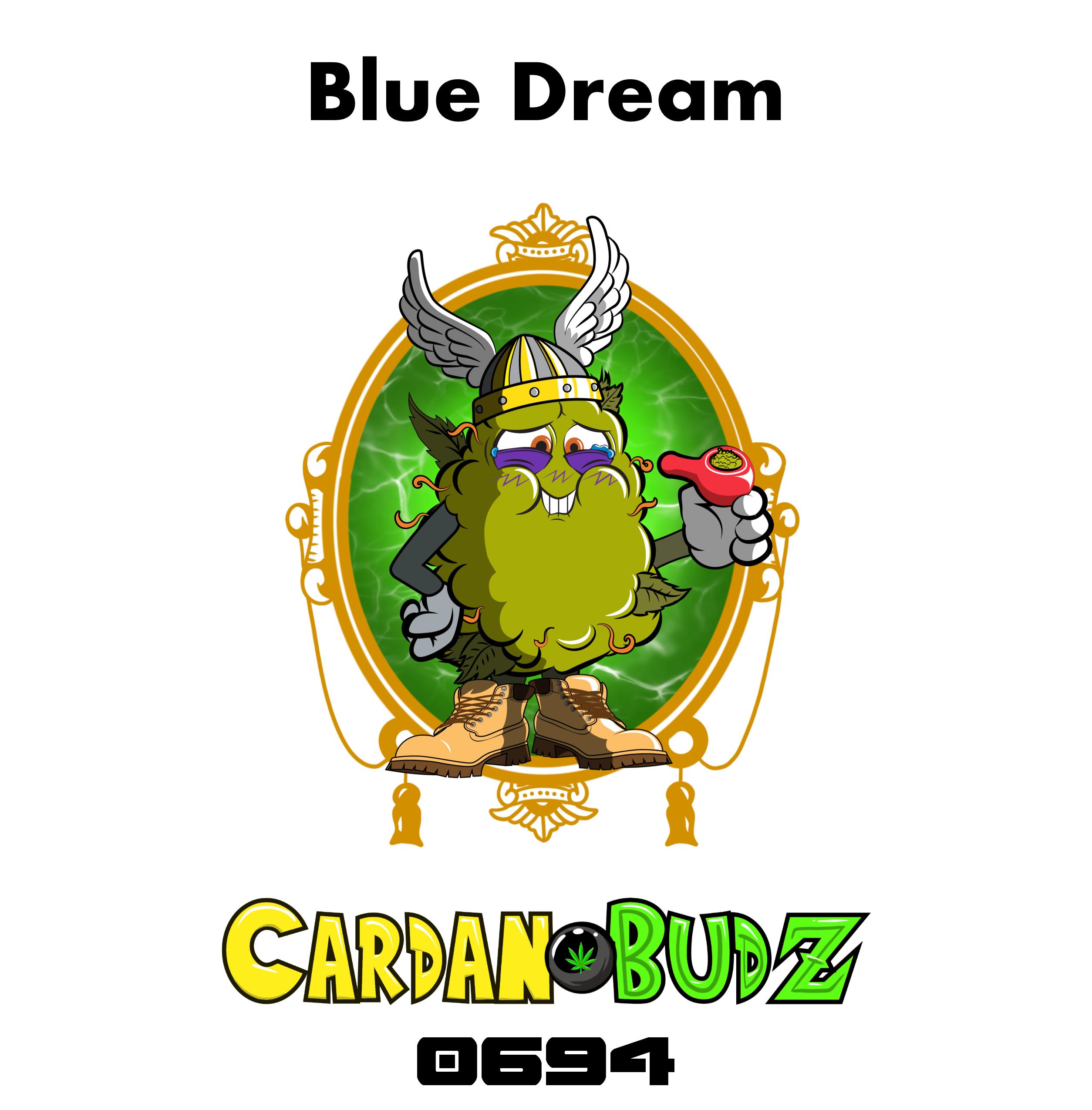 CardanoBud #694