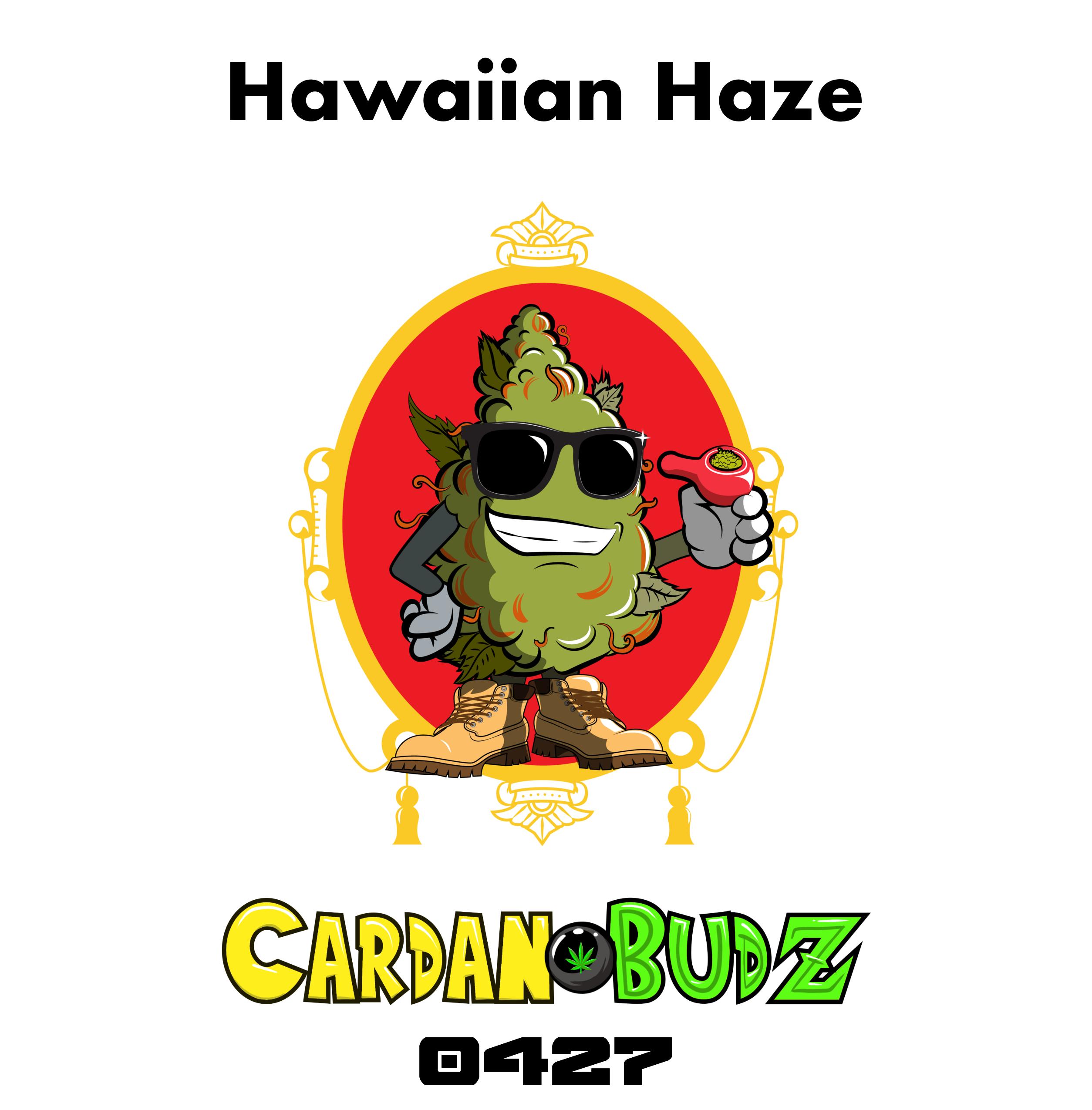 CardanoBud #427